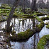 Krásnohorská jaskyňa, Najkrajšie miesta na Slovensku 5