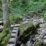 Tiesňava Veľký Sokol, Slovenský Raj Národný Park, Slovensko - 410