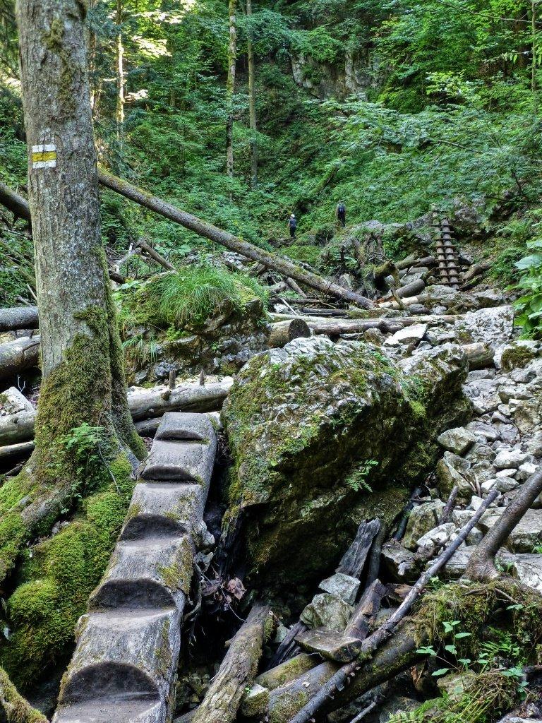 Tiesňava Veľký Sokol, Slovenský Raj Národný Park, Slovensko – 410