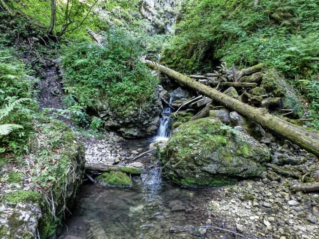Tiesňava Veľký Sokol, Slovenský Raj Národný Park, Slovensko - 419