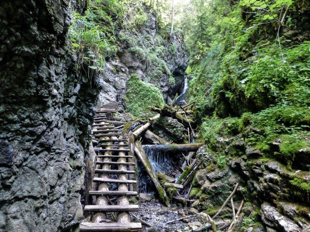 Tiesňava Veľký Sokol, Slovenský Raj Národný Park, Slovensko – 437