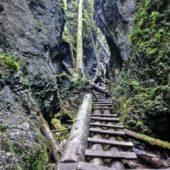 Tiesňava Veľký Sokol, Slovenský Raj Národný Park, Slovensko - 489
