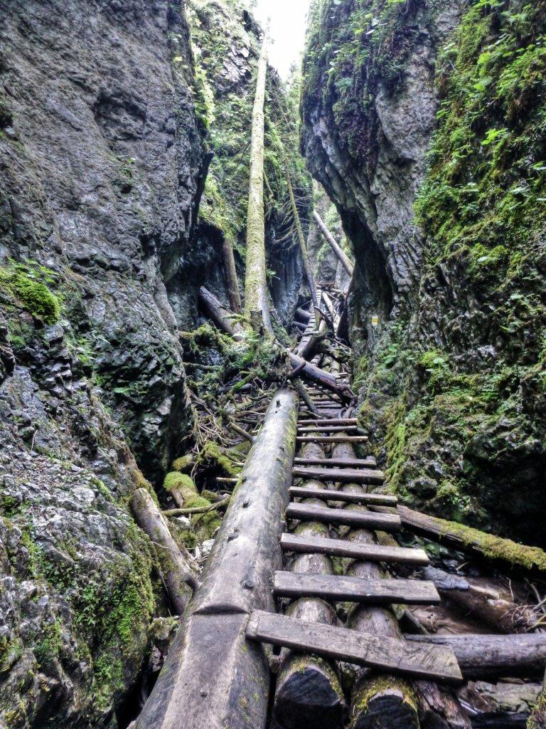 Tiesňava Veľký Sokol, Slovenský Raj Národný Park, Slovensko – 489