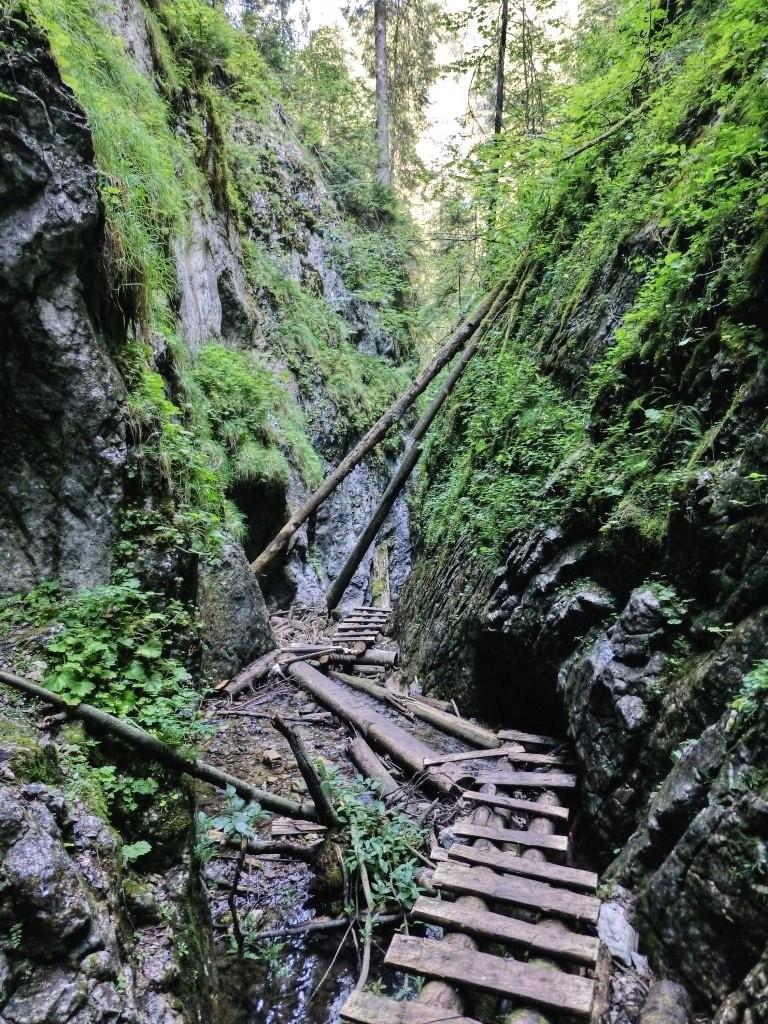 Tiesňava Veľký Sokol, Slovenský Raj Národný Park, Slovensko - 509