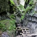 Tiesňava Veľký Sokol, Slovenský Raj Národný Park, Slovensko - 513