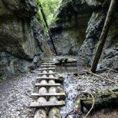 Tiesňava Veľký Sokol, Slovenský Raj Národný Park, Slovensko - 515