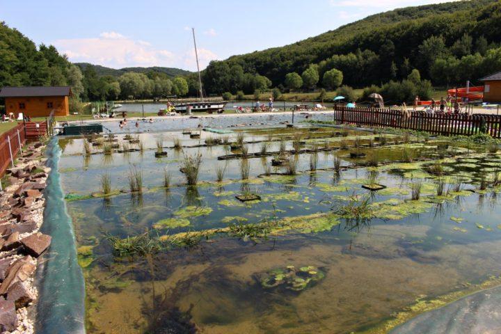 Bio kúpalisko, Rekreačný areál Lysá hora, Kam na výlet Východné Slovensko