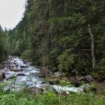 Javorová dolina, Tatranská Javorina, Kam na výlet Východné Slovensko 4