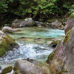 Javorová dolina, Tatranská Javorina, Kam na výlet Východné Slovensko 5