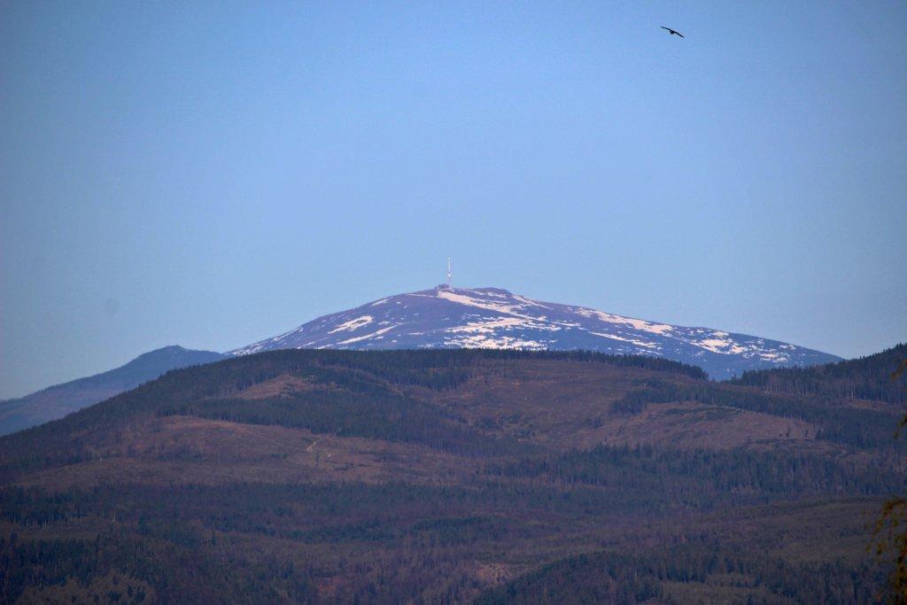 Kráľová hoľa z vrcholu Bukovec (1127m), Východné Slovensko