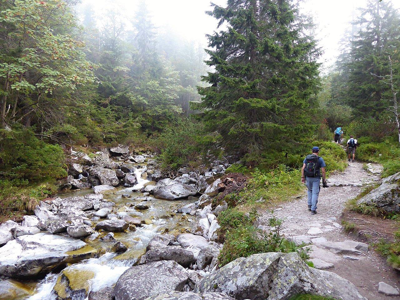 Malý studený potok pri Zamkovského chate, kam na výlet Východné Slovensko