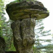 Skalný hríb Markušovce, Východné Slovensko