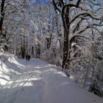 Zimná scenéria na Roháčke, Čierna hora, Kam na výlet východné Slovensko 2