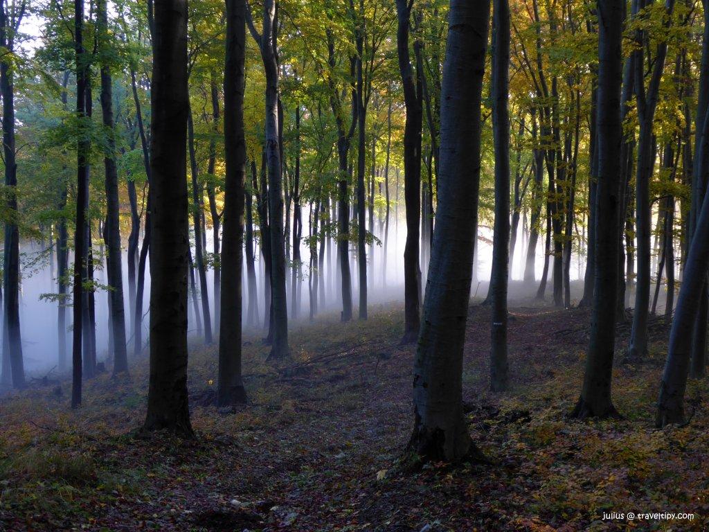 Bukový prales Rožok, Slovenské pamiatky UNESCO
