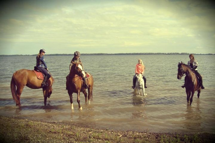Turistika na koni po Šírave, Hipocentrum, Vinné, Slovensko