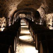 Vínna pivnička Tokaj Macík Winery, Košický región, Slovensko - 2