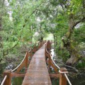 Vodná zážitková cesta Oborín - náučný chodník