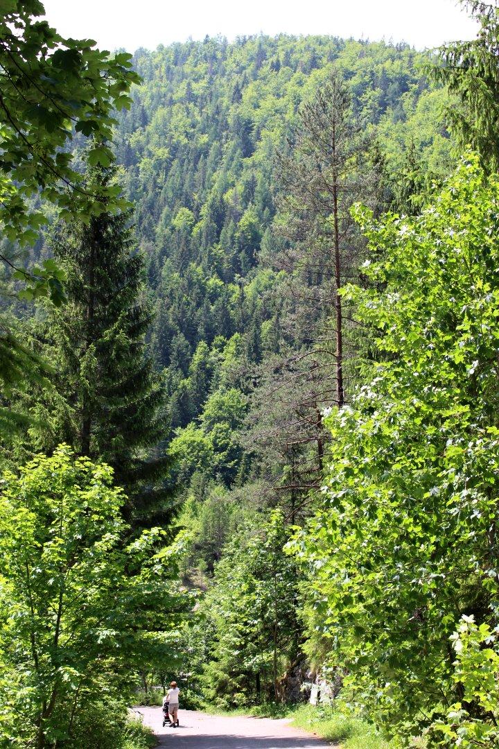 Stratenský kaňon, Slovenský raj, Košický kraj, Slovensko