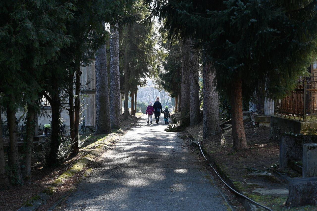 Cintorín Rozália, Košice – 1