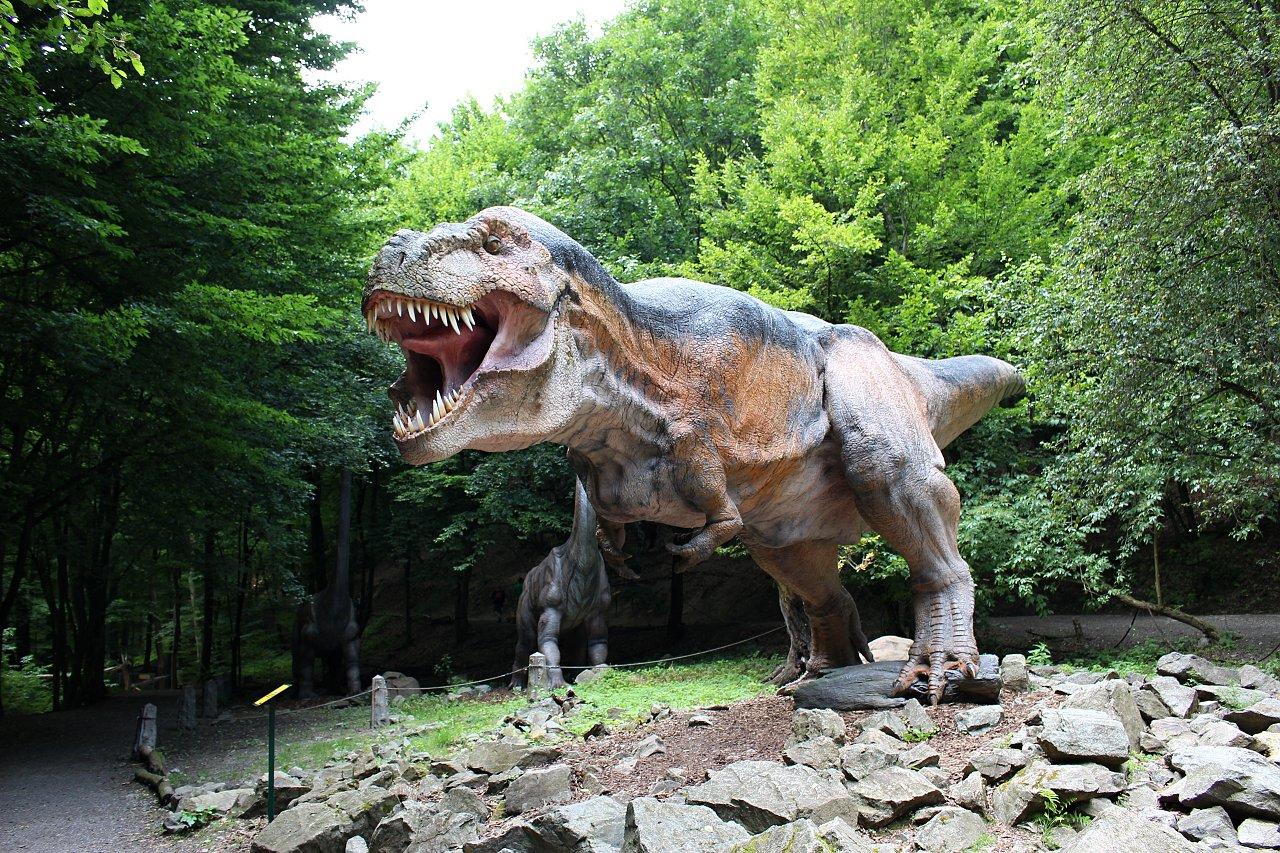 Dinopark Košice, Kam do mesta Košice