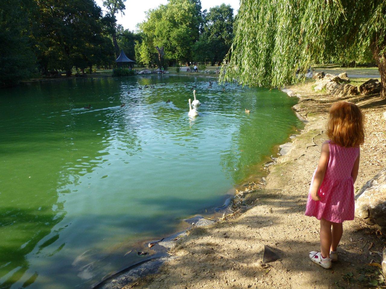 Park v Barci, Kam do mesta Košice