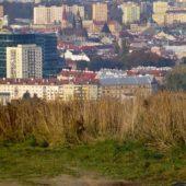 Výhľad na mesto, Heringeš, Košice