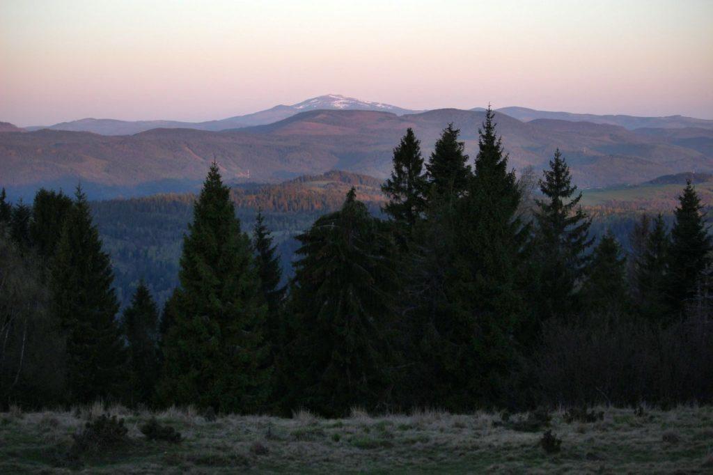 Kráľova hoľa z Bukovca (SNV)
