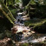 Zejmarská roklina, Dedinky, Ľadový expres 2