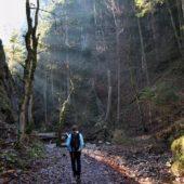 Ranné svetlo v Suchej Belej, Národný park Slovenský raj