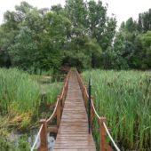 Oborín - Vodná zážitková cesta, CHKO Latorica - 1