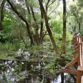 Oborín - Vodná zážitková cesta, CHKO Latorica - 6