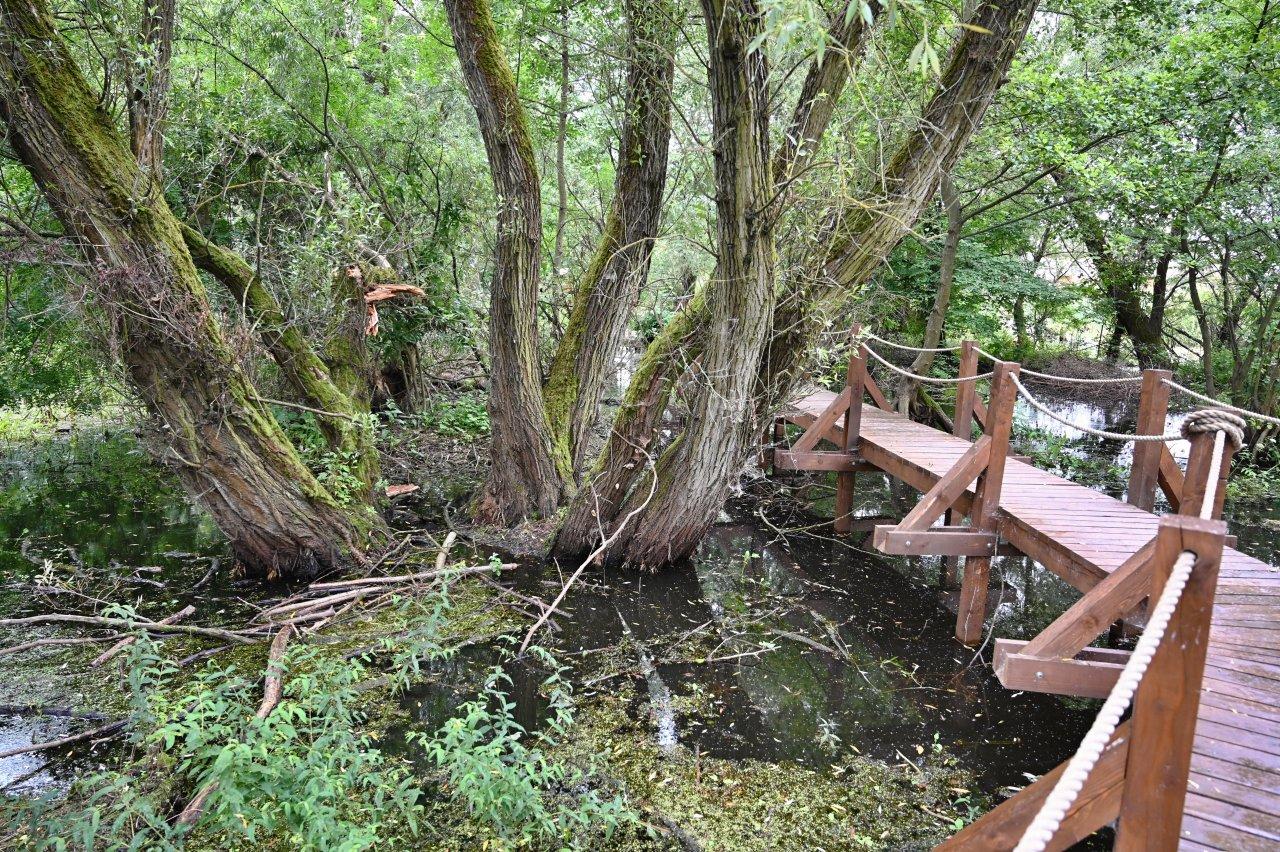 Oborín – Vodná zážitková cesta, CHKO Latorica – 9