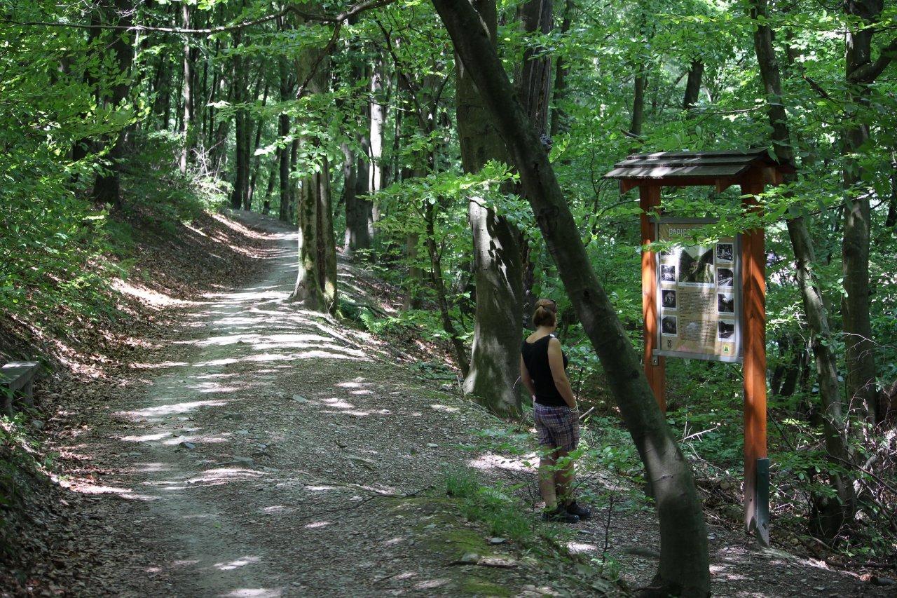 Turistika v okrese Košice – Čermeľ – Alpinka