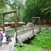 Zoo Košice s kočiarom